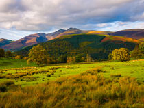 Skiddaw, Lake District National Park by Craig Joiner