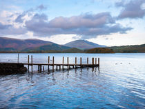 Jetty at Victora Bay on Derwent Water by Craig Joiner