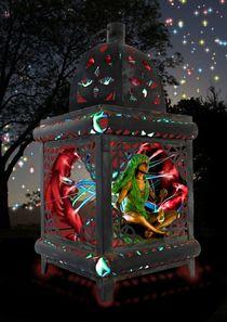 Fairy-lantern