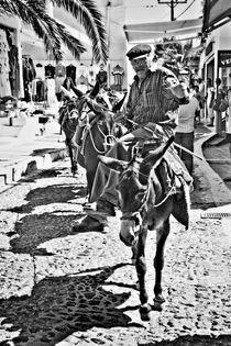 santorini donkey train. by meirion matthias