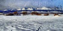 Winter High Tatras von Tomas Gregor