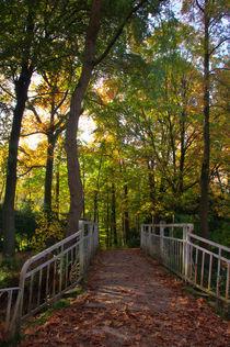 Brückenweg von AD DESIGN Photo + PhotoArt