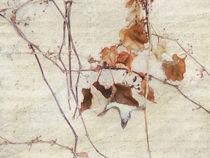 Wintersinfonie by Franziska Rullert