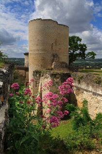 Chateau Chinon, Loire Valley, France by Louise Heusinkveld