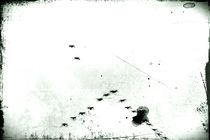 flugs Flügel flatter von Bastian  Kienitz