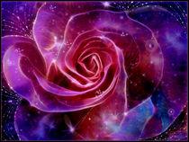 Galaxy-rose