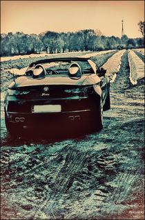 Alfa Romeo Spider von Nicole Frischlich