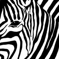 Zebra 1 von 3 by Lidija Kämpf