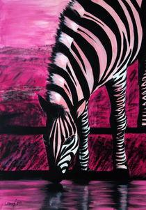 Rosa Zebra by Lidija Kämpf