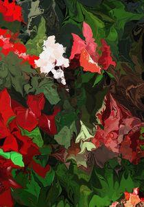 The Un-promised Rose Garden von David Lane