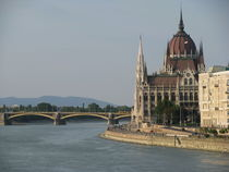 Budapest - panoramic view by Mila Muratti