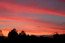 Gerogia Red Sky Sunset by Michael Waters
