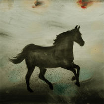 Horse von Antonio Rodrigues Jr