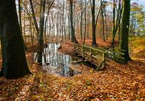 Like a Bridge over troubled Water ... by Paul Artner