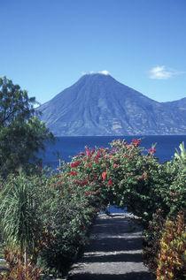 PATH TO THE VOLCANO Lake Atitlan Guatemala von John Mitchell