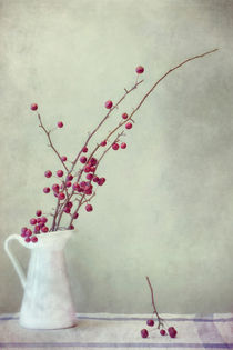 winter still life by Priska  Wettstein