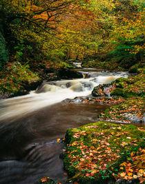 East Lyn River, Exmoor, England von Craig Joiner