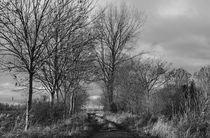 Herbstweg-2-dot-1