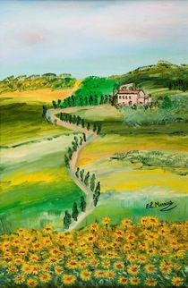 Messina-verde-sentiero