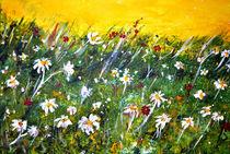Sommer - Blumenwiese by Matthias Rehme