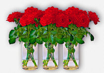 Red roses by Leopold Brix