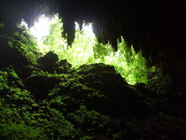 Cave,Camuy Puerto Rico by Tricia Rabanal