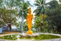 Goldener Buddha auf einer Lotusblüte von Gina Koch
