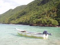 Boat Beach of Naufrago, Caribbean, Samana, Republica Dominicana von Tricia Rabanal