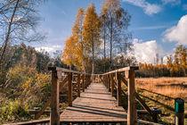 wooden path by Bernhard Rypalla