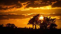 Sunset by Bernhard Rypalla