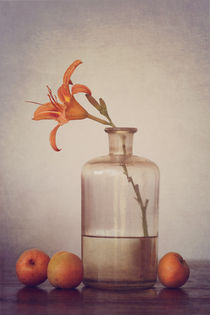 Still life with apricots by Diana Kraleva