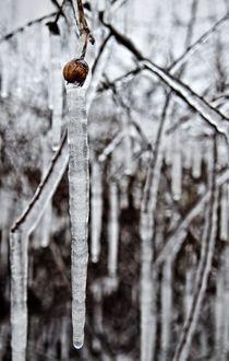Freezing-2