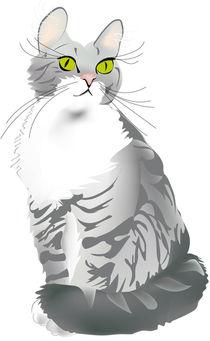 Graue Tigerkatze by Gina Koch