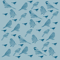 Md-birds-in-blue