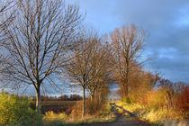 Herbstweg-1