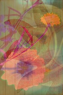 FLOWER by © Ivonne Wentzler