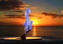Sunset-perch