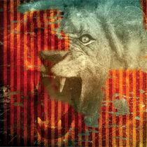 Lion von Holly Danger