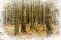 Old card with forest  by Hobort Hob