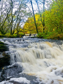 Waterfall, Garnwent Forestry Centre  by Hazel Powell