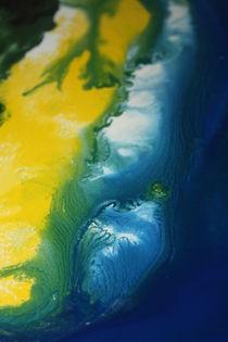 Island Sand Dune von Lisa Payton