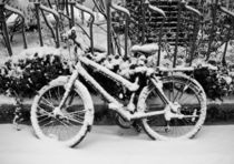 Bicycle in the snow by Victoria Savostianova