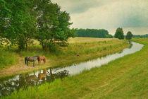 Landschaft mit Pferden von pahit