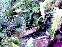 Wasser by Tina M. Emig
