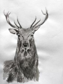 Deer by Condor Artworks