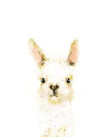 Llama Portrait von Paola Zakimi