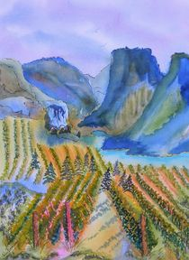 Okanagan Vineyard 2 von Warren Thompson