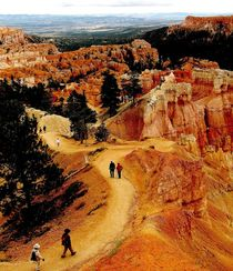 Turists-at-bryce-canyon