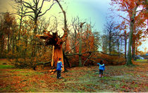 NY park after hurricane Sandy by Maks Erlikh