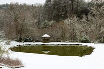 Snow-at-the-pond
